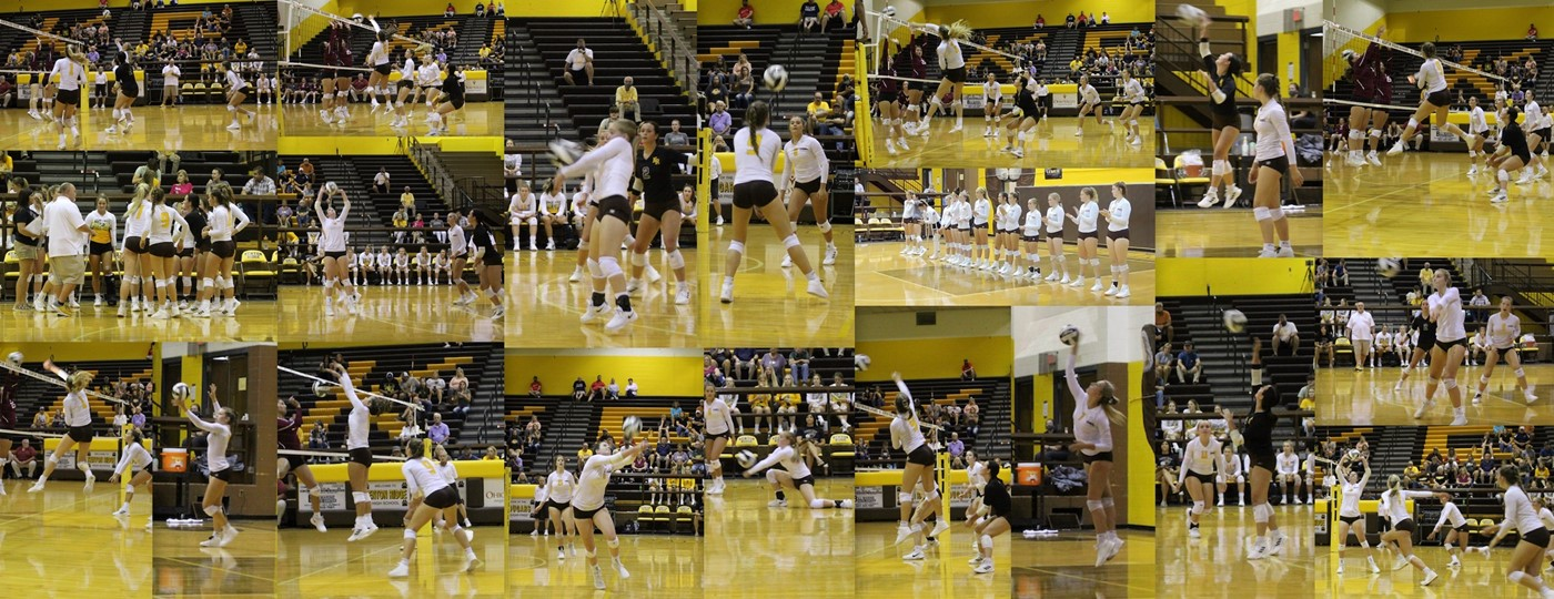 volleyball collage